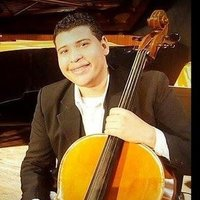 Violoncello Professor and Orchestra Director at the Federico Villena Music School Venezuela